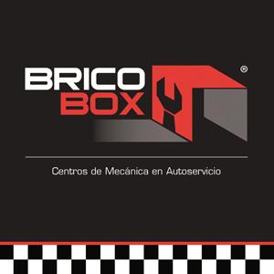 Bricobox. Franquicia de talleres de mecánica en Autoservicio