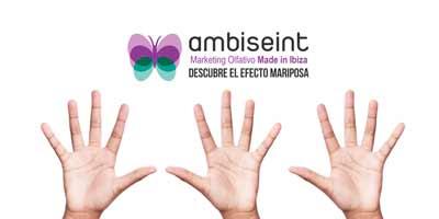 Ambiseint cerró el año 2018 con 15 nuevas aperturas