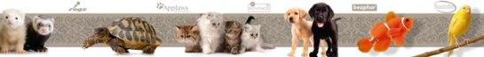 Franquicias By Mascota - Tiendas Especializadas de Mascotas.