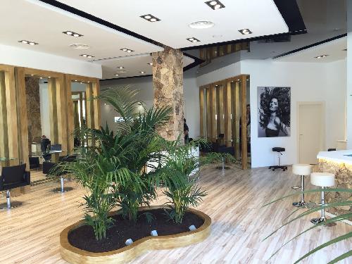 Franquicia CARCHE BEAUTY & HEALTH oportunidad de aperturar su propio negocio de Franquicia de Peluqueria.