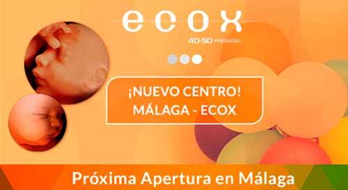 """ECOX4D-5D Franquicias, franquicias rentables, franquicias baratas. Nuestro exclusivo plan de formación, """"Ecox imparte la formación específica"""" permite obtener el título de Técnico en Ecografía Emocional."""