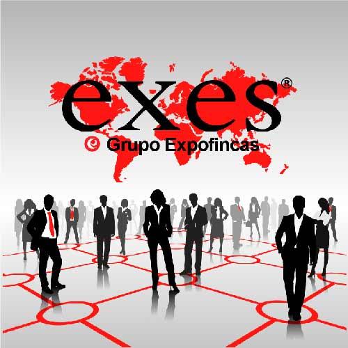 Franquicias EXES-Grupo Expofincas. Es una compañía con más de 20 años de experiencia en el sector, especializada en la compra-venta de activos  inmobiliarios