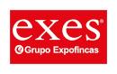 Franquicia EXES-Grupo Expofincas. La simple idea de iniciar un negocio propio puede dar vértigo. Por ello, es sumamente importante y vital hacerlo de la mano de un partner solvente.