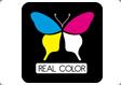 franquicias Real Color Queremos que tú Franquicia sea muy rentable y por ello concedemos exclusividad para una amplia zona de ventas.